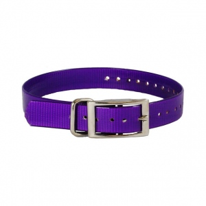 """The Buzzard's Roost Collar Strap 1"""" Purple 1"""" x 24"""""""