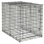 "Midwest Homes for Pets Big Dog Crate: 54"" x 35"" x 45"""